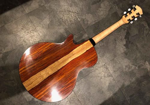 The beautiful cocobolo back